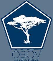 One Ball One Village Logo